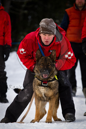 Canadian Avalanche Rescue Dog Assosiation - C.A.R.D.A