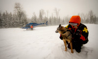 Canadian Avalanche Rescue Dog Assosiation